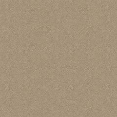 Crunch Wilsonart Laminate 4X8 Horizontal Textured Gloss