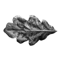 Leaves 2-1/4 Inch Diameter Antique Pewter Cabinet Knob