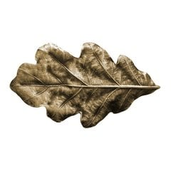 Leaves 2-1/4 Inch Diameter Antique Brass Cabinet Knob