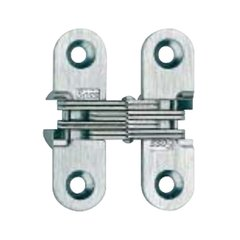 #203 Invisible Hinge Satin Brass