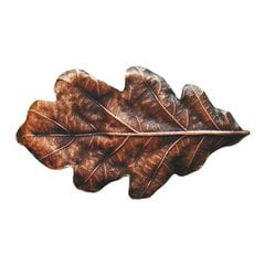 Leaves 2-1/4 Inch Diameter Antique Copper Cabinet Knob