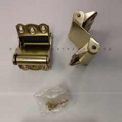 9700 Gate Double Acting Spring Hinge - Satin Brass