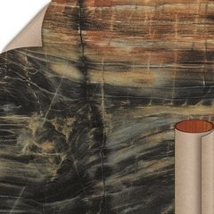 Petrified Wood HD Etchings Finish 5 ft. x 12 ft. Countertop Grade Laminate Sheet