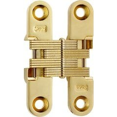 #204 Invisible Hinge Polished Brass
