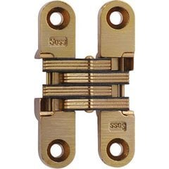 #204 Invisible Hinge Satin Brass