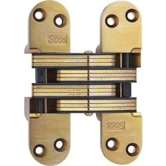 #220 Invisible Hinge Satin Brass