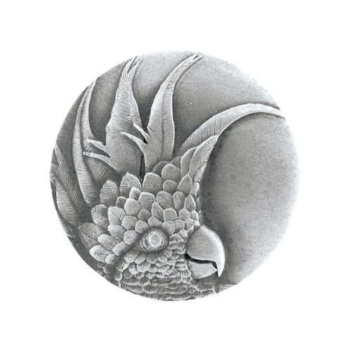 Notting Hill Tropical 2 Inch Diameter Antique Pewter Cabinet Knob NHK-327-AP-L