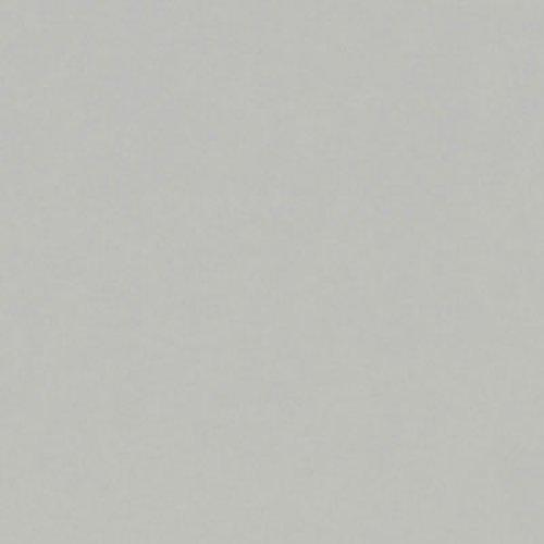 """Wilsonart Dove Grey Edgebanding - 15/16"""" X 600' WEB-D9260-15/16X018"""
