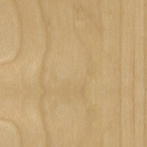Veneer Tech White Birch Wood Veneer Rotary PSA Backer 4 feet x 8 feet