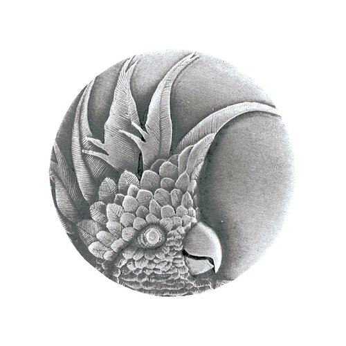 Notting Hill Tropical 1-3/8 Inch Diameter Antique Pewter Cabinet Knob NHK-324-AP-L