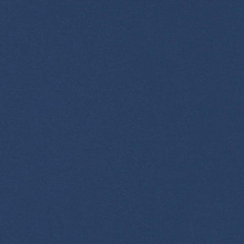 Wilsonart Caulk 5.5 oz Tube - Indigo (D379) WA-D379-5OZCAULK