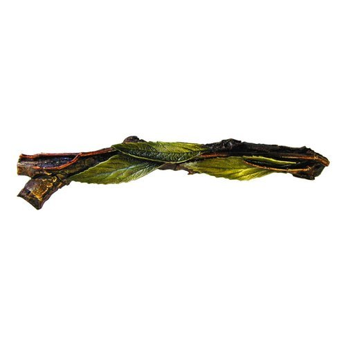 Leaves 3 Inch Center to Center Brass Hand Tinted Cabinet Pull <small>(#NHP-672-BHT-L)</small>