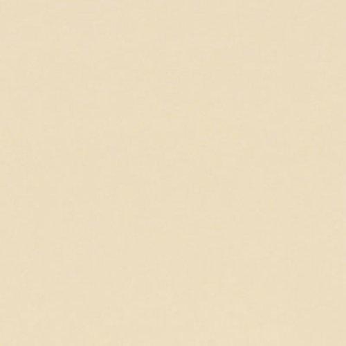 Wilsonart Caulk 5.5 oz Tube - Sand (D331) WA-D331-5OZCAULK