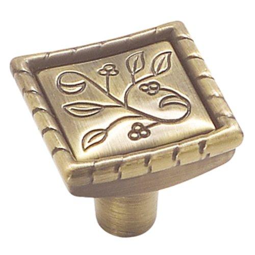 Amerock Vineyard 1-1/8 Inch Diameter Elegant Brass Cabinet Knob BP4466EB