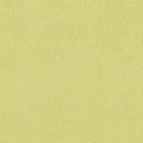 Wilsonart Kiwi Matte Finish 5 ft. x 12 ft. Countertop Grade Laminate Sheet 4917-60-350-60X144
