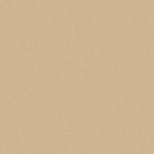 Wilsonart Sand Matte Finish 4 ft. x 8 ft. Vertical Grade Laminate Sheet D331-60-335-48X096